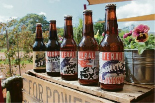 Swan Valley's Feral Brewery takes out top spot on national craft beer poll