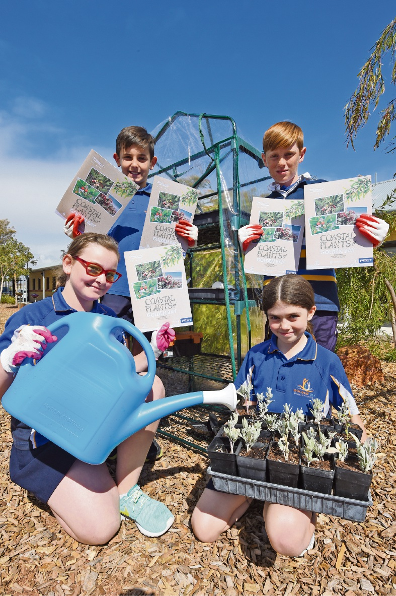 Golden Bay Primary botany club students publish brochure on native plants