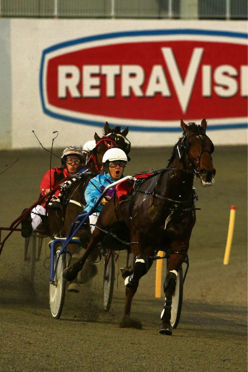 Pacing: Gloucester Park tips, June 1