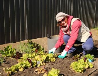 Greenwood resident Kristina Claesson hard at work in the Ranleigh Way garden.