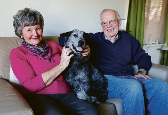 Joan and Mike Gourley have taken in Hazel, fostering her until she finds a new home. Picture: Matt Jelonek