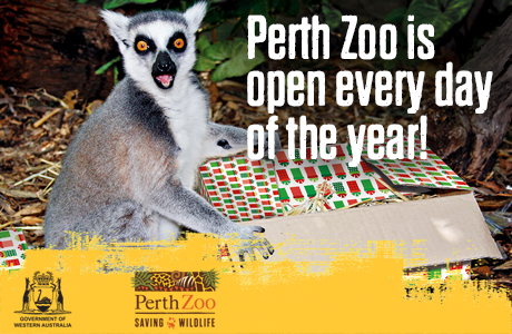 New Year's Eve at Perth Zoo