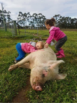 Aurora (2) and Phoenix (5) Parker with Wombat the pig.
