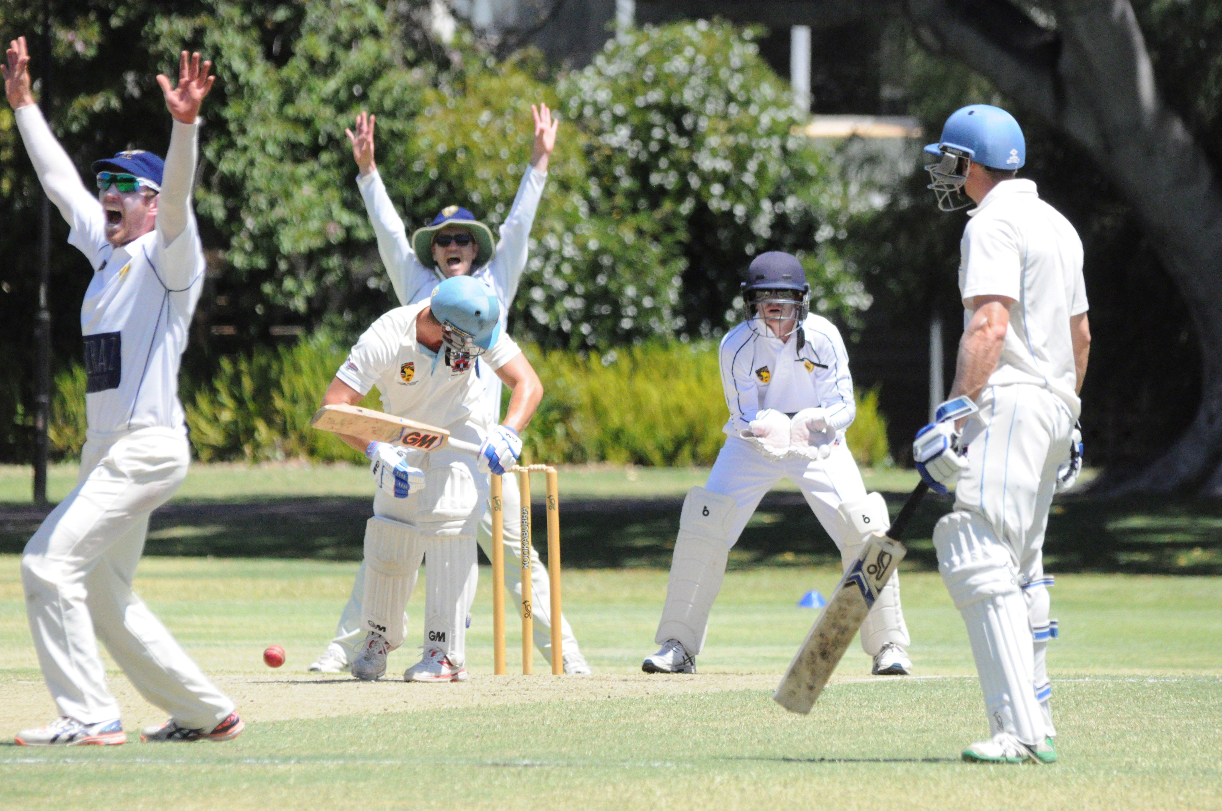 WACA Premier Cricket: Tigers in strong position against Bayswater-Morley