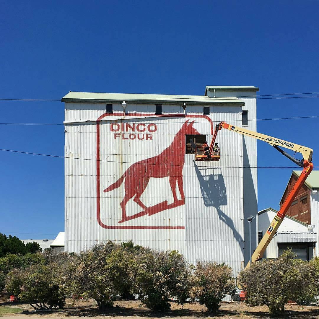 Workers remove the dingo's head from the Dingo Flour building in North Fremantle. Picture: Perth Life/Facebook