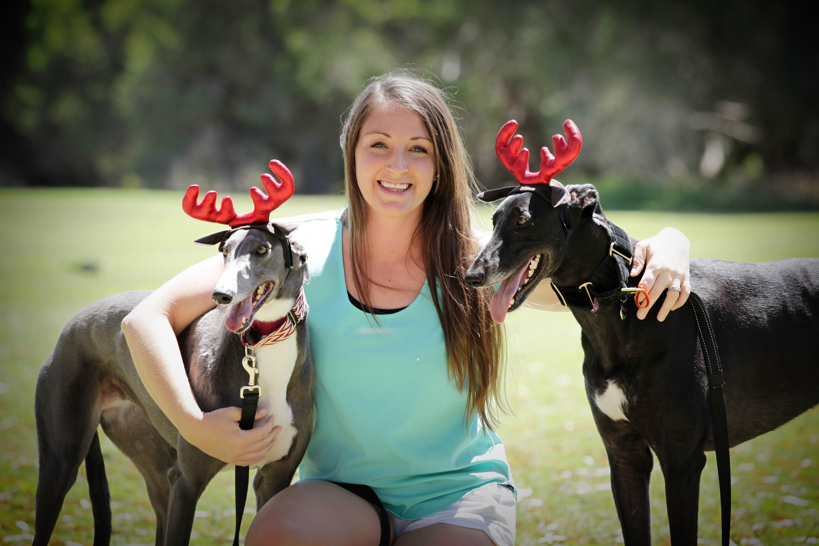 Marie Bloemer with Russian and Mitch. Rehoming and rescuring greyhounds, a business in Maylnds is hosting an event to raise funds to the greyhound charity Greyhound Adoption WA.