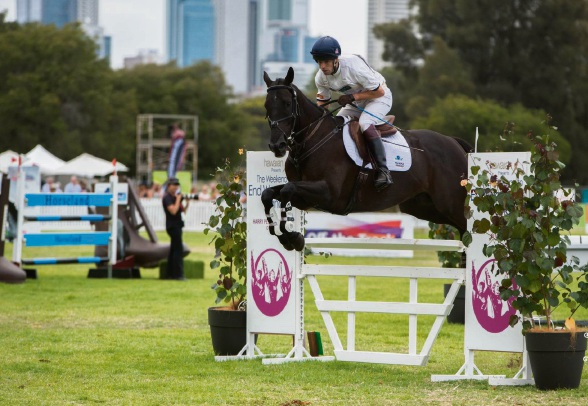 Eventing in the Park: time to horse around in Victoria Park