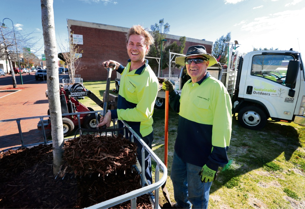 Simon Pawley and Trevor Brown from Sustainable Outdoors installing streetscape trees around Midland. Picture: David Baylis