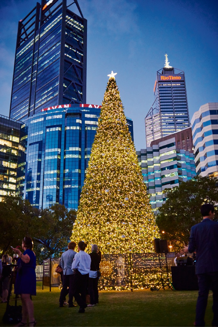 Elizabeth Quay: WA's biggest Xmas tree shines for Lights for Lifeline