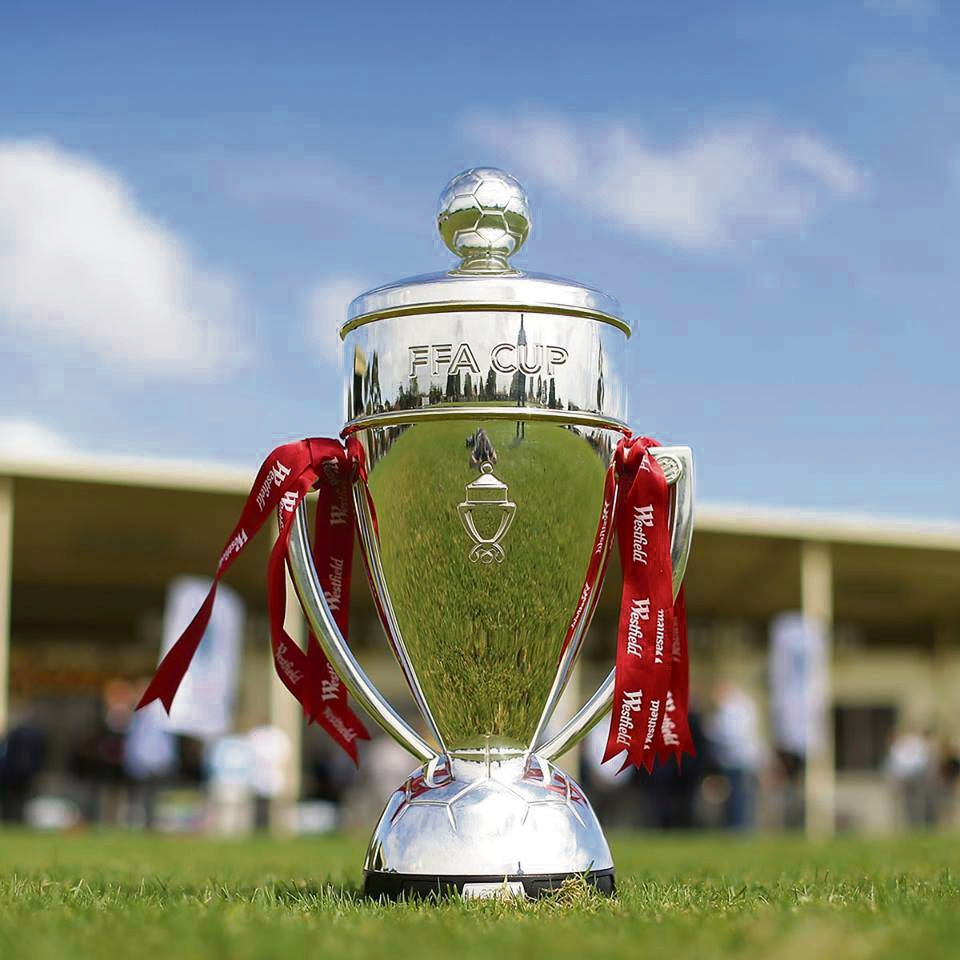 The FFA Cup. Picture: FFA/Facebook