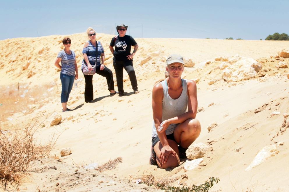 Yanchep: relocated kangaroos causing concerns