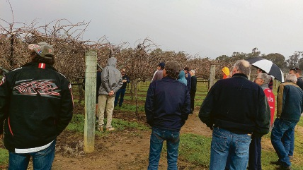 Department of Agriculture and Food table grape specialist Colin Gordon discussing modifications to 'link' trellis for grape covers.