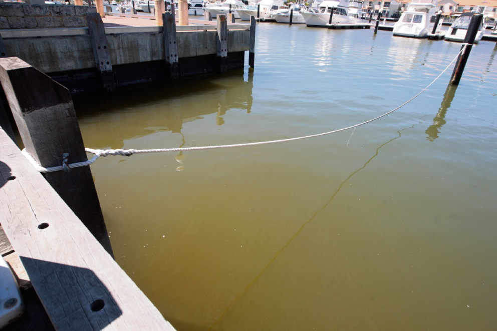 Contact with the marina water could have serious health implications.  Picture: Bruce Hunt        www.communitypix.com.au   d463641
