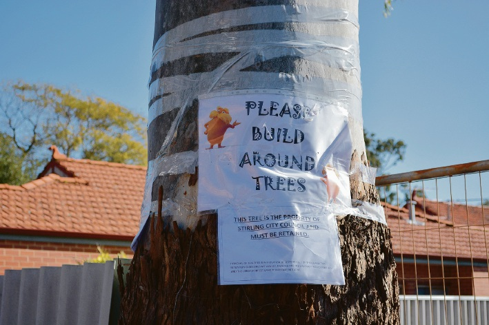 Mt Lawley residents fight City of Stirling for survival of tree