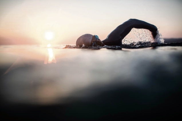 Open Water Swimming Series: Australia Day Sorrento event is Rottnest Channel rehearsal