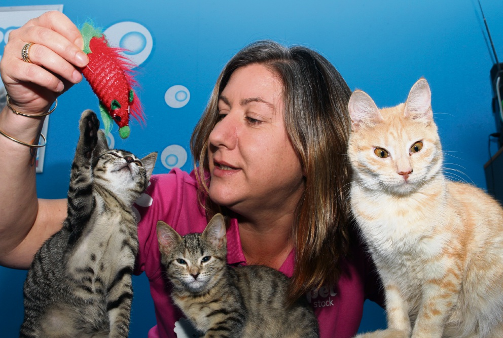 Amanda Stevens, from PETstock, with Bjorn, Asta and Marigold. Picture: Robin Kornet d464264