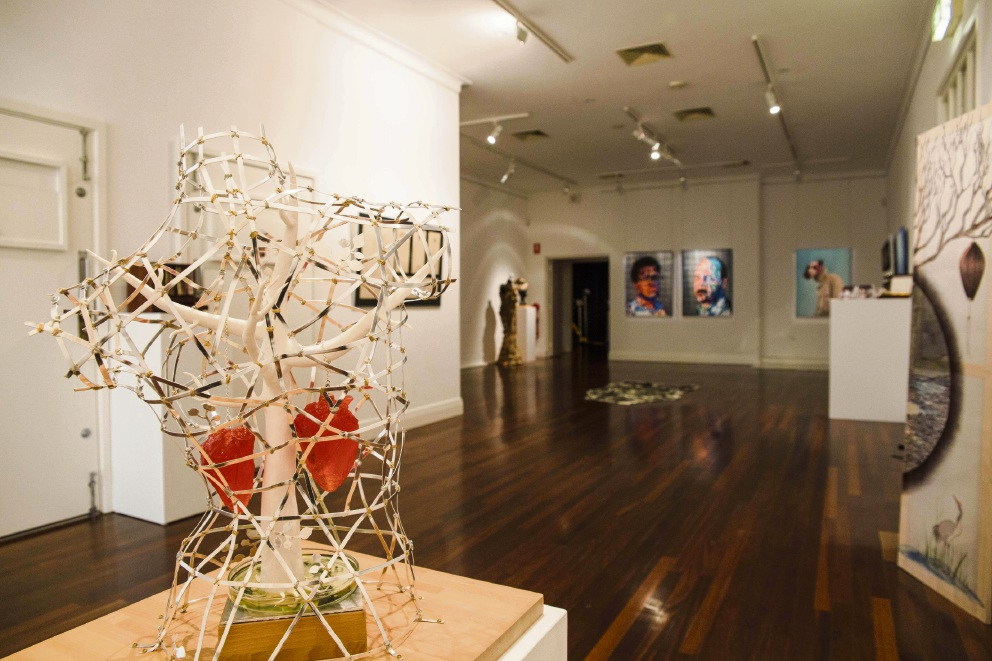 The Southern Perspectives exhibition features works by  Year 12 visual arts students.