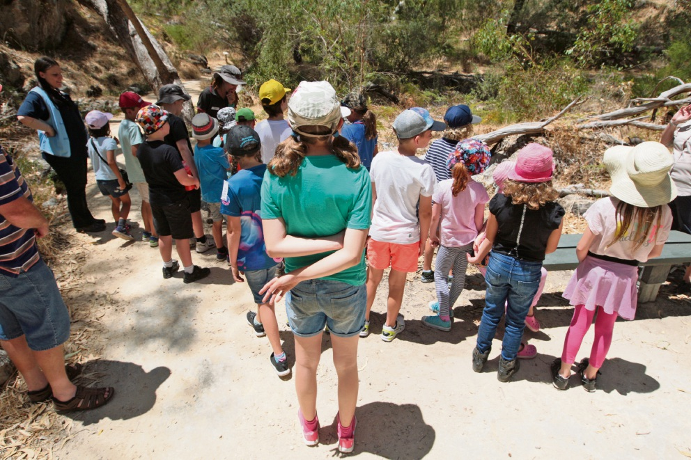 Kids at the paleontology holiday workshop in Boomerang Gorge.