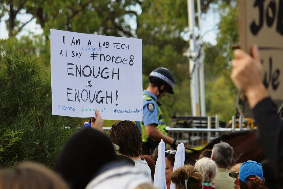 Roe 8 protests: more than 1000 show up to voice disapproval