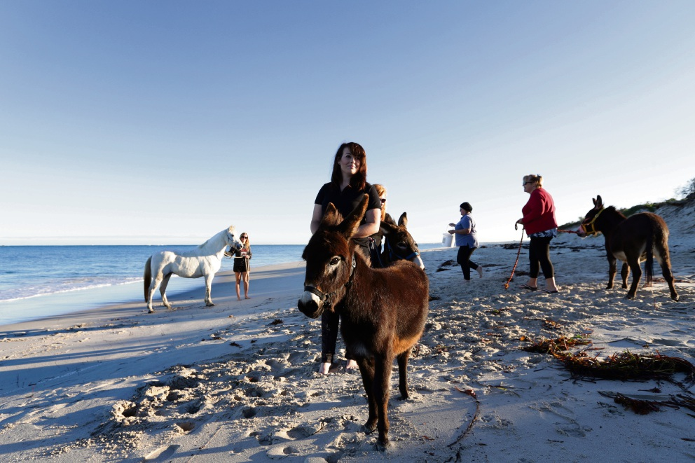 Calls for Wanneroo to open its own horse beach Ellie Stanley with Piero. Picture: Martin Kennealey
