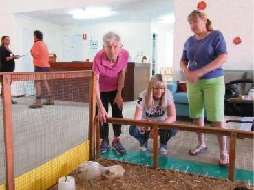 Farm animal cuddles on offer atat Bethanie Kingsley