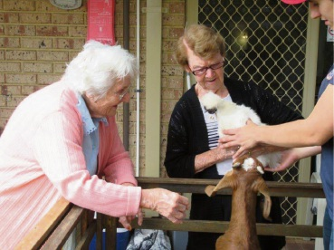 Farm animal cuddles on offer atat Bethanie Kingsley