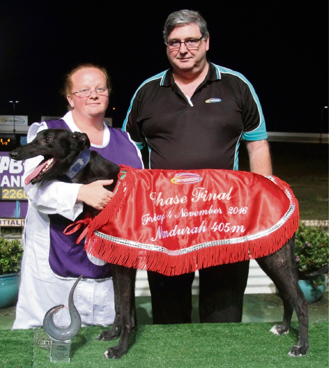 Greyhounds WA track and ground manager Neil McMeikan and handler Amanda MacLean with Hello I'm Leo.