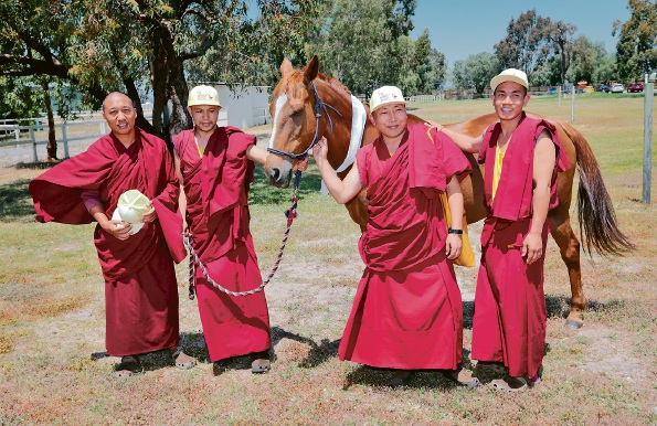 Sherap Gyatso, Lobsang Tenpa, Lobsang Gelek and Sangey Tsering with 'Wonder' the horse during the blessing of The Henley Brook. The Gyuto Monks of Tibet visit The Henley Brook. Picture: David Baylis