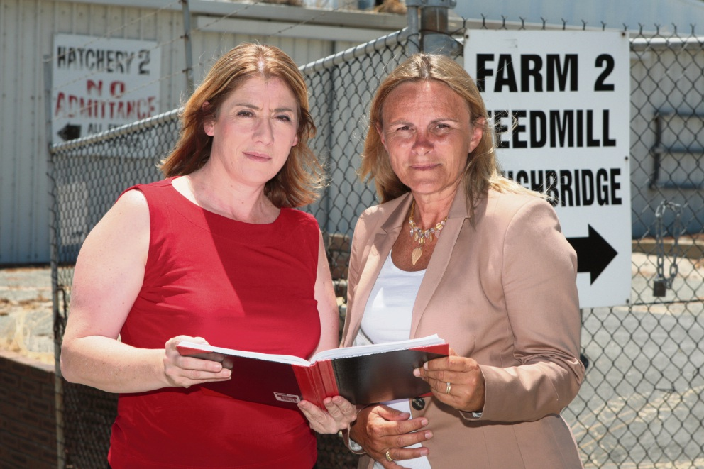 Rita Saffioti and Sabine Winton are working on a plan to relocate the Inghams factoray in Sinagra
