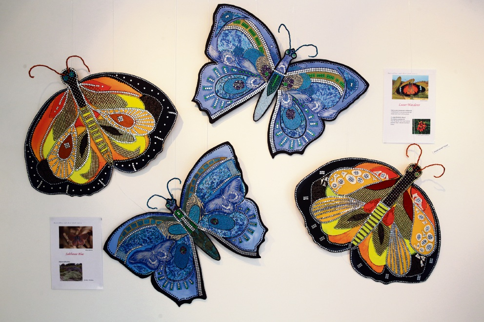 Joondalup Art Gallery's butterfly exhibition. Picture: Martin Kennealey d465258