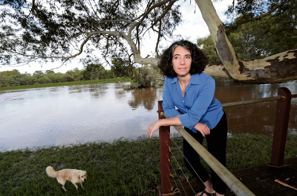 Swan Valley: rain and flooding sours bumper grape crop