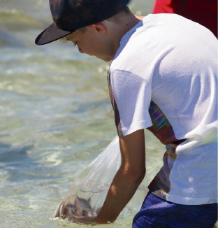 Help Recfishwest release snapper into wild this weekend