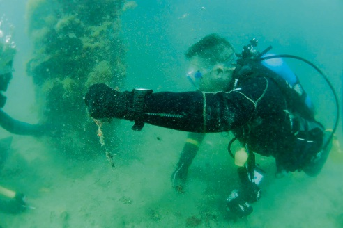 A diver cleans up under the Ammo Jetty and (below) some of the rubbish collected. Pictures: Immersion Photography