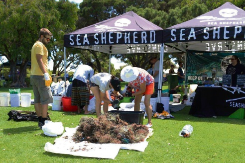 Ammo Jetty clean up nets big haul of rubbish