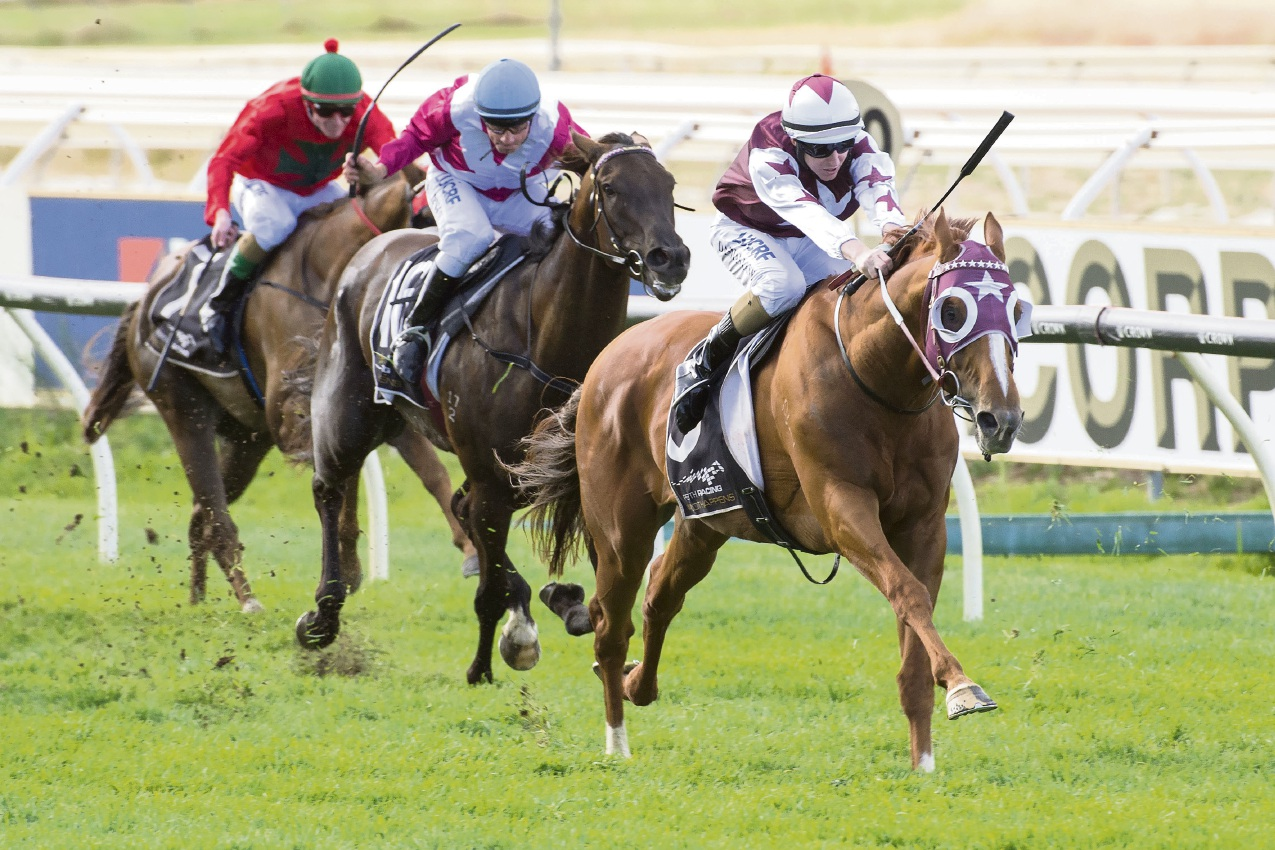Kingston Town Classic: Stratum Star wins amid controversy