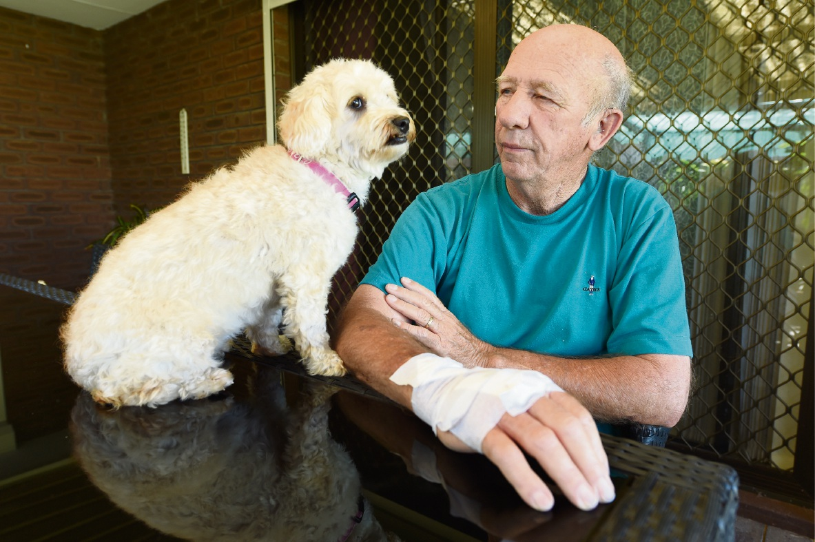 Andrew Dullens was walking Stella when they were attacked by a dog. Mr Dullens needed 16 stitches to close up his wounds. Picture: Jon Hewson |www.communitypix.com.au   d466253