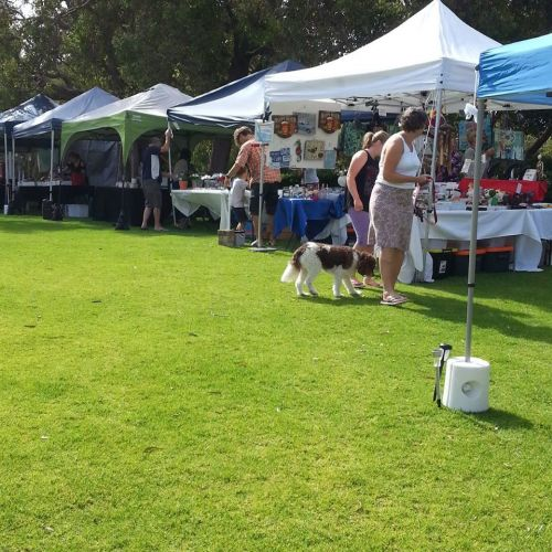 Kadidjiny Park Monthly Markets to hold big shave for cancer this weekend