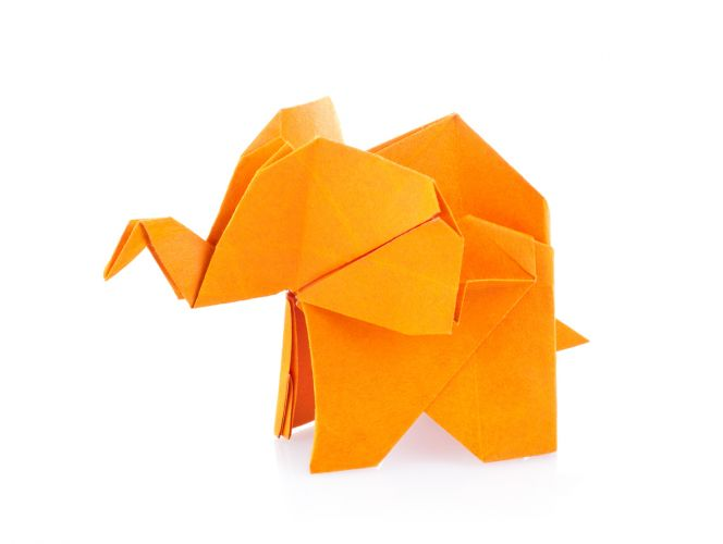 Origami workshop on at Kenwick Library