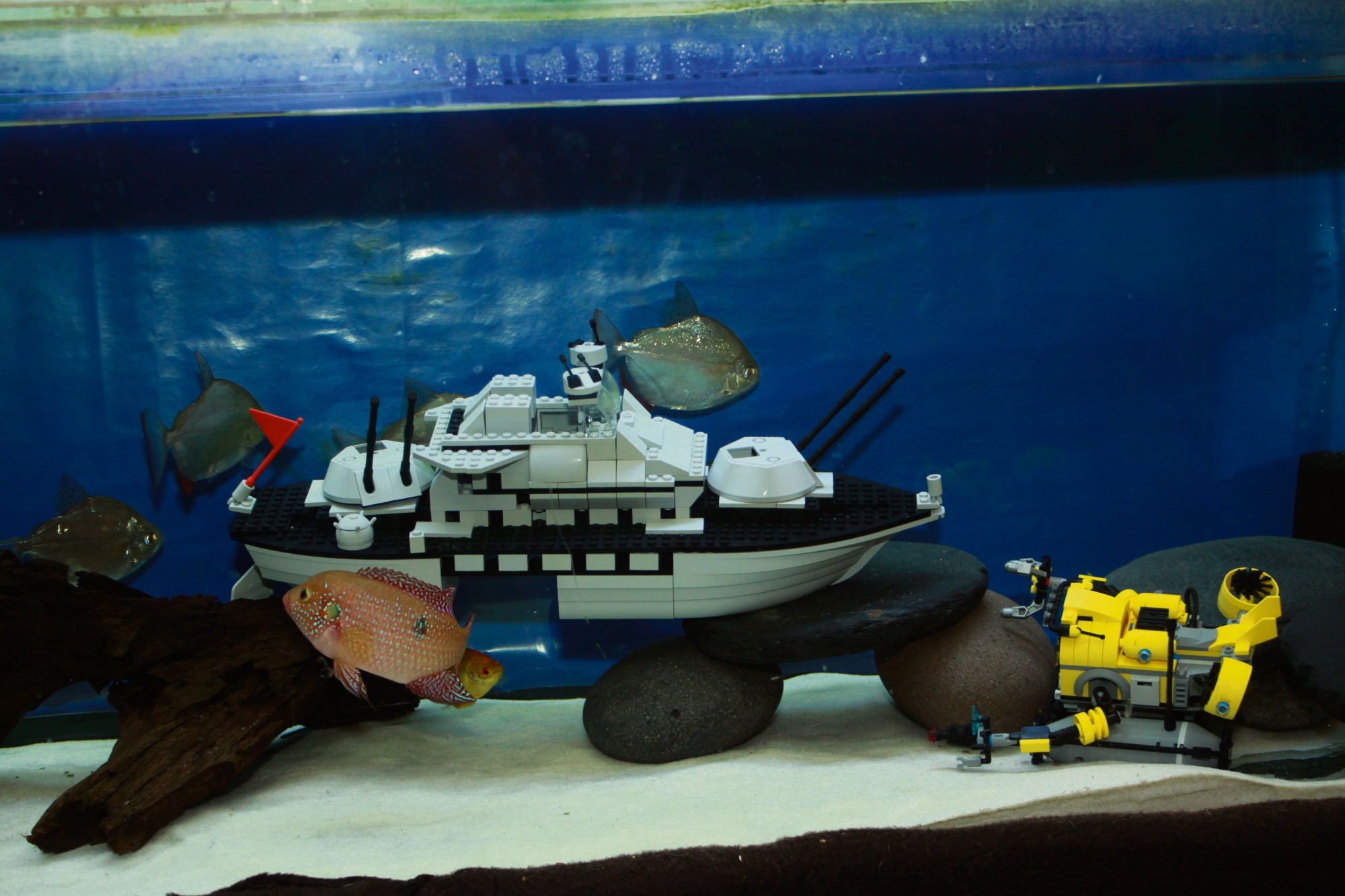Baldivis 'Lego sensei' building on success