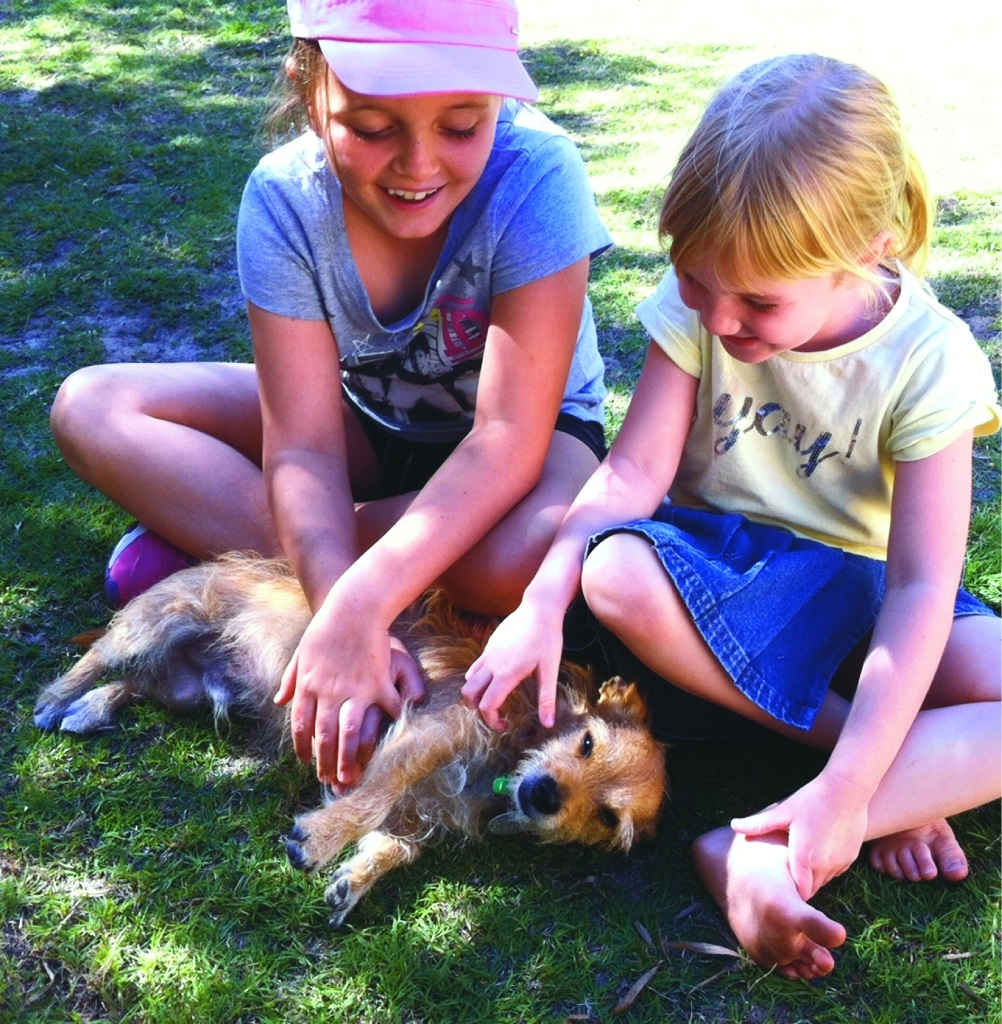 Audrey and Matilda Griffiths play with Rocket, the dog they rescued from Shenton Park Dogs' Refuge Home after seeing him with his foster carers.