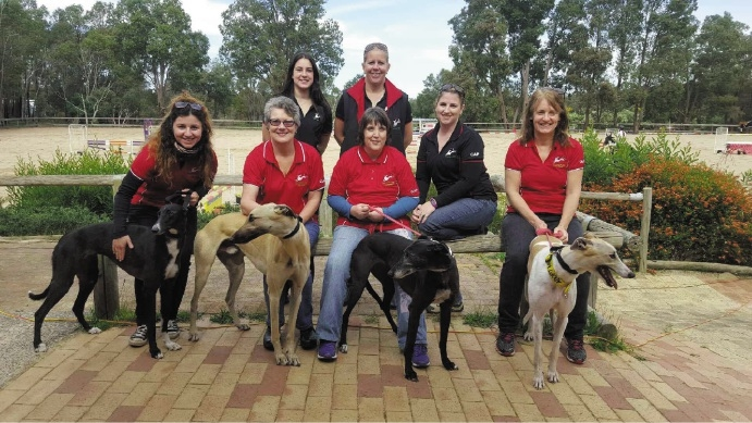 GAP members and greyhounds at the Hills Show Jumping Day at Parkerville Equestrian Centre.