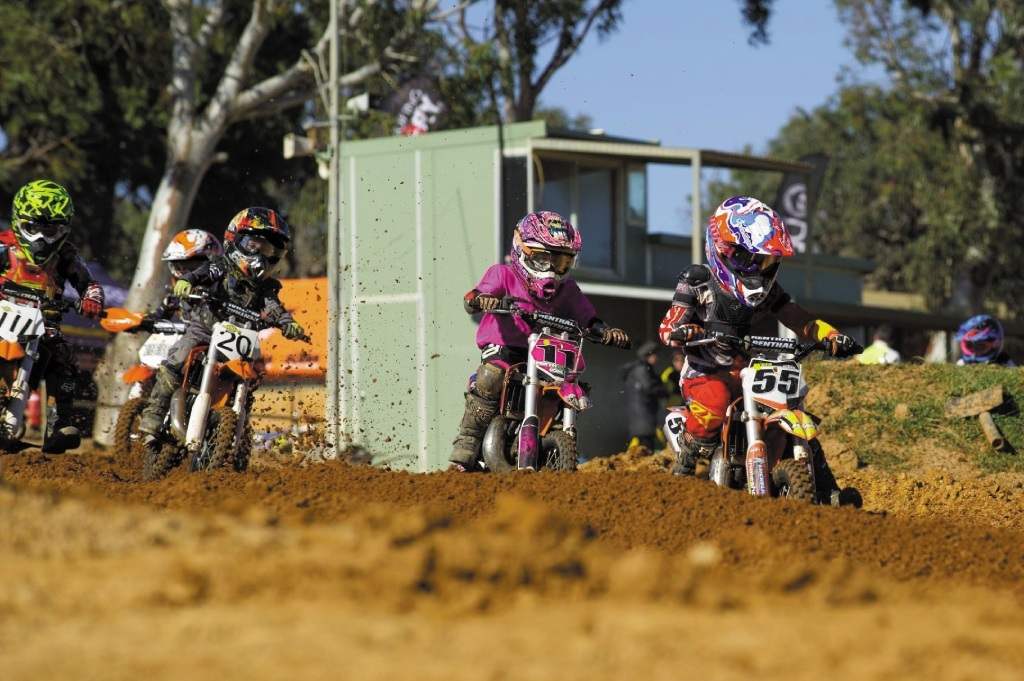 Juniors competing in the 50cc auto class. Picture: Gordon Pettigrew/ True Spirit Photos
