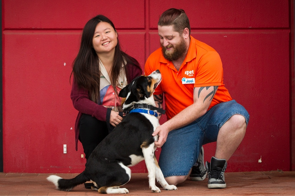 Waverley Ong and Joel Black lavish attention on Kingston, the border collie cross-breed.