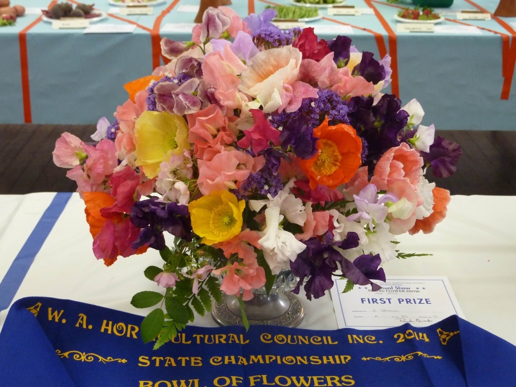 Ron Seaton won the State Championship title for a bowl of flowers in last year's show.