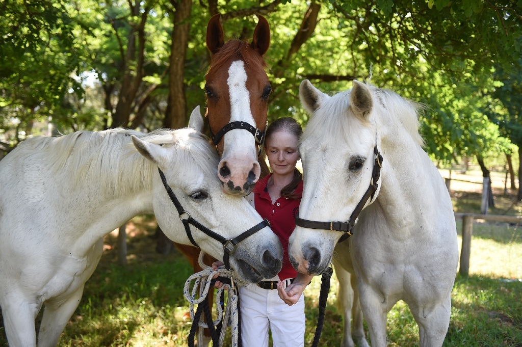 Georgia Lowry with her horses Casper, Foxy and Cisco. Picture: Jon Hewson        d445595