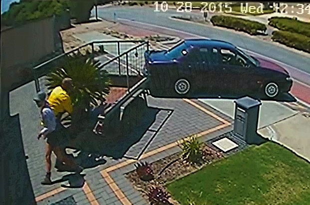 CCTV footage of the cycad plant being loaded onto the trailer.