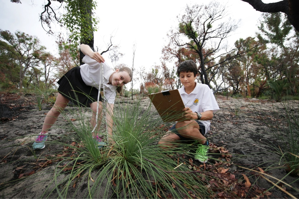 Students Eva Markey and Rohnan Kilfunis monitor plants after a fire swept through bushland near the school.  Picture: Andrew Ritchie
