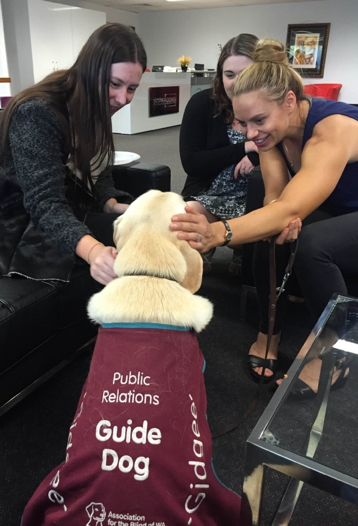 Public relations Guide Dog Gidgee with Jessie Jeffrier,                    Carrie Tansey and Jordan Bairstow.