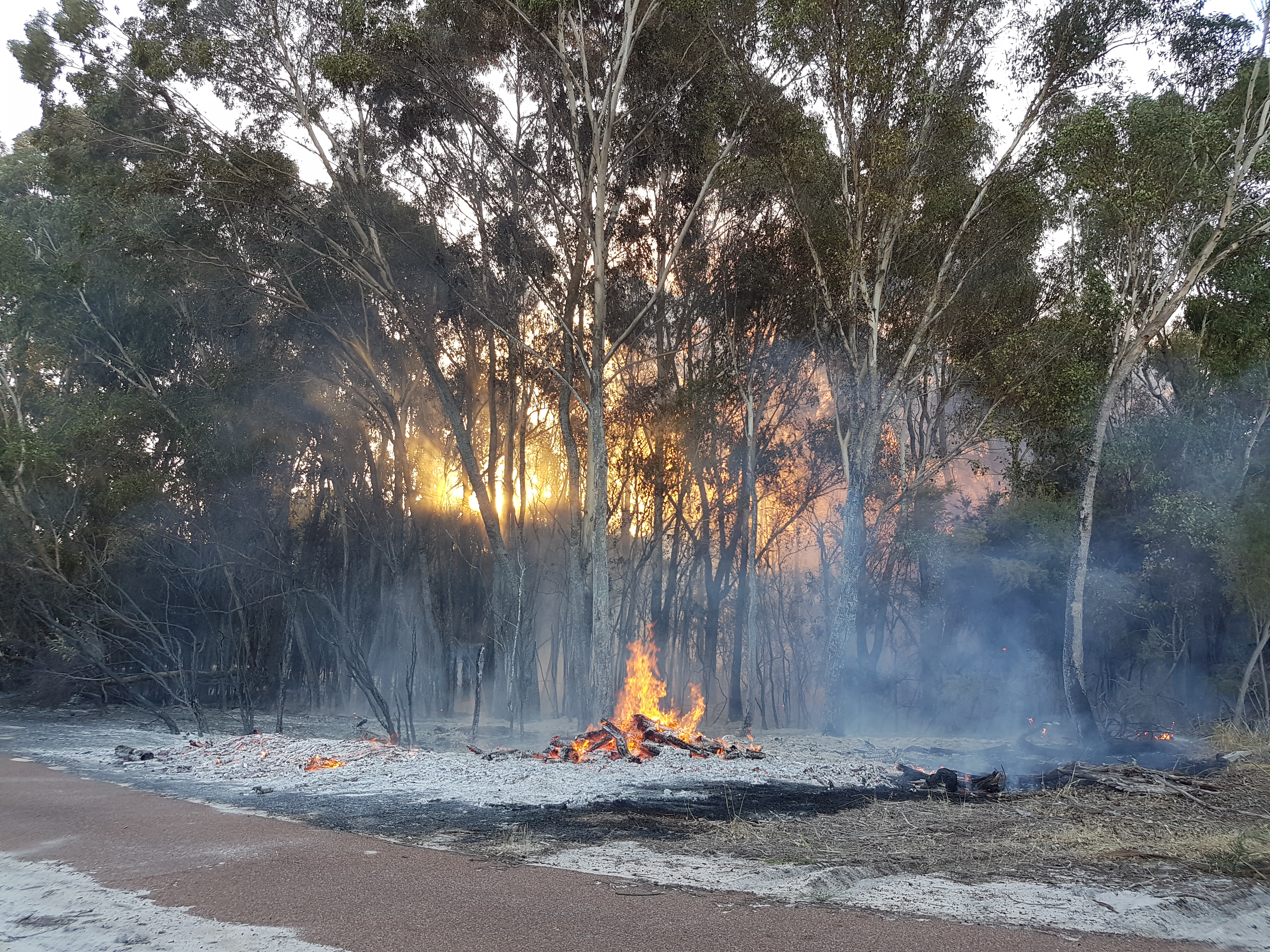 The fire at Richard Lewis Reserve in Bull Creek. Picture: Josh Zimmerman.