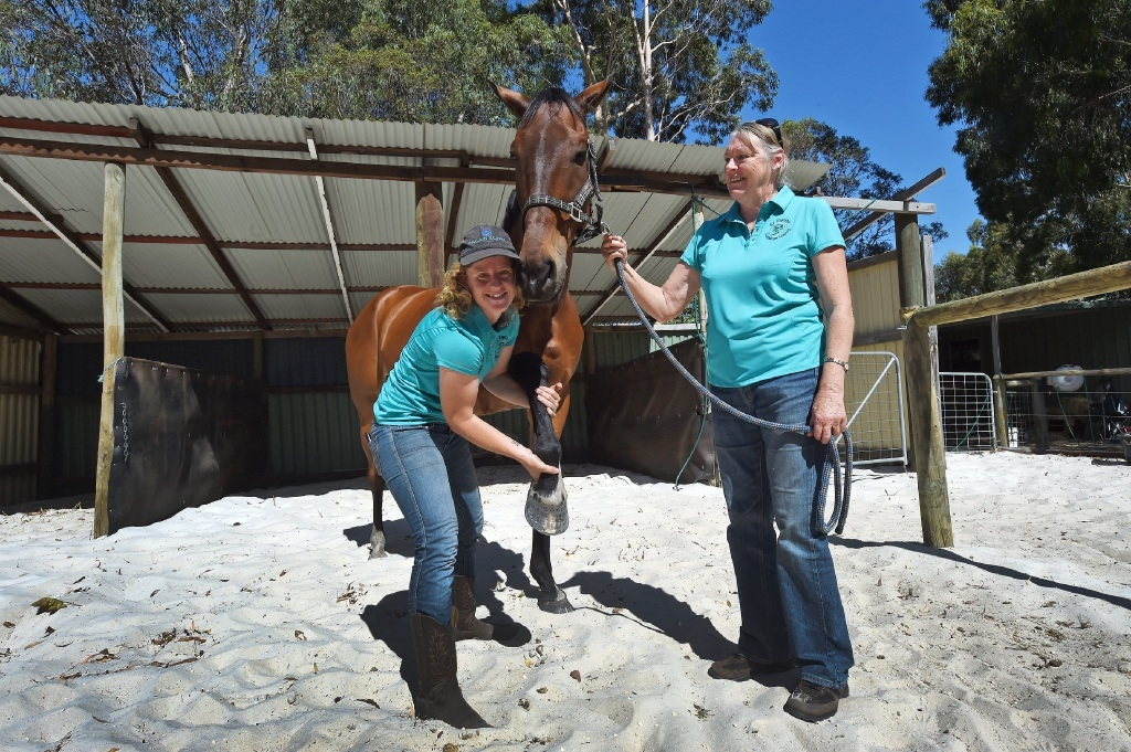 Teele Hooper-Worrell, with Karen Miller, has written her phone number on Hugo's hoof in case of an emergency. Picture: Jon Hewson         www.communitypix.com.au   d447104